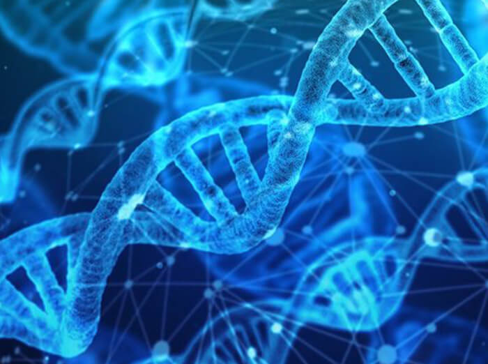 A DNA strand under a microscope